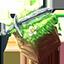 Иконка Майнкрафт сервера RedBlock
