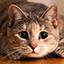 Иконка Майнкрафт сервера SkyWorld