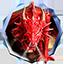 Иконка Майнкрафт сервера DragonBorn 1.8-1.15.2
