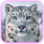 Иконка Майнкрафт сервера MineBars