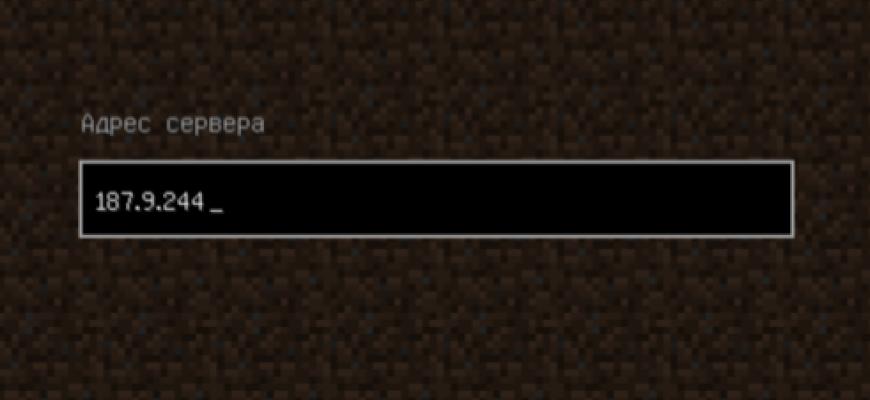 Поле ввода IP адреса сервера в игре Minecraft.