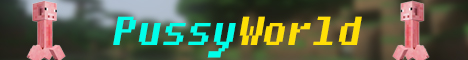 Баннер сервера Майнкрафт PussyWorld