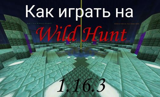 Как играть на WildHunt
